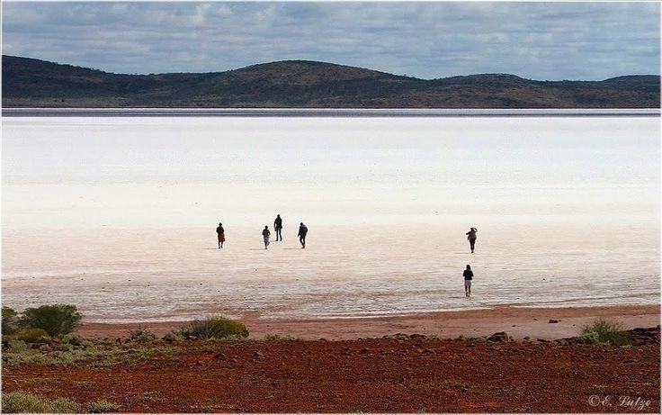 Walking on Salt ** Lake Gairdner SA