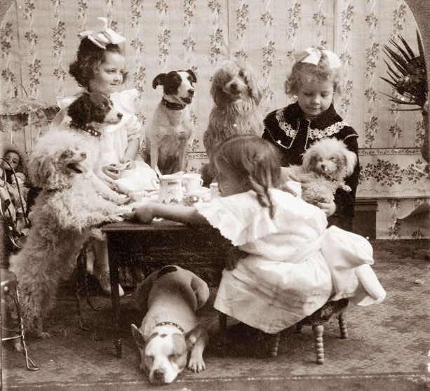 1906 Tea Party with dogs.Parties Animal, Little Girls, Vintage Photos, Vintage Teas, Tea Parties, Old Pictures, Old Photos, Vintage Girls, Teas Parties