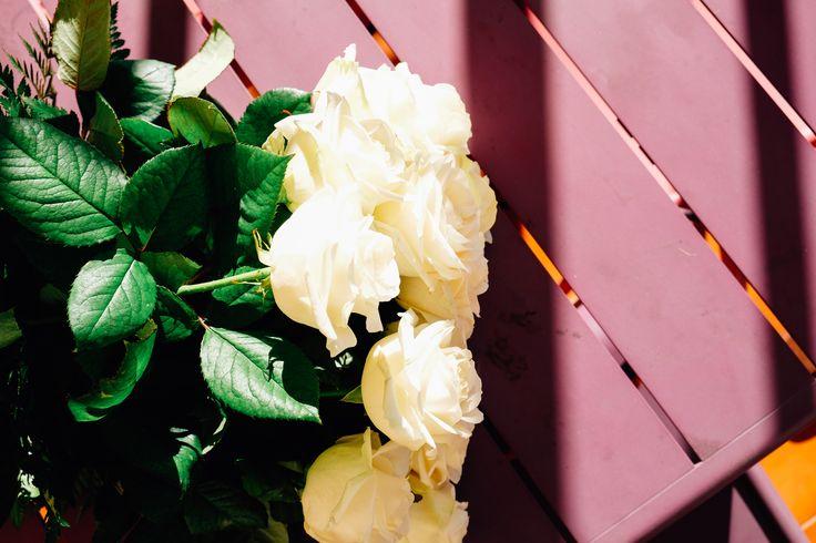 Envía un ramo de rosas blancas de tallo largo de la variedad Avalanche. Conocida por el tamaño de la flor, mucho más grande que el de otras variedades y por su mayor duración, ya que puede durar hasta 2 semanas con los debidos cuidados. Son rosas de tallo largo, aproximadamente de 70 cm de altura, por lo que la cabeza de la flor es más grande y el tallo más robusto. Te sorprenderá la fragancia que desprenden.