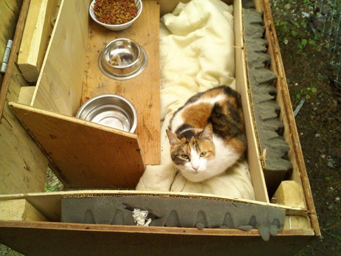 17 Best ideas about Outdoor Cat Houses on Pinterest Outdoor cat