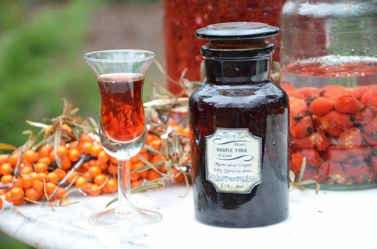Krople Toda to znana kompozycja ziołowa dla zdrowia naczyń krwionośnych. Główne składniki kropli to owoce rokitnika, czarnej jagody, głogu, czosnek i chili.