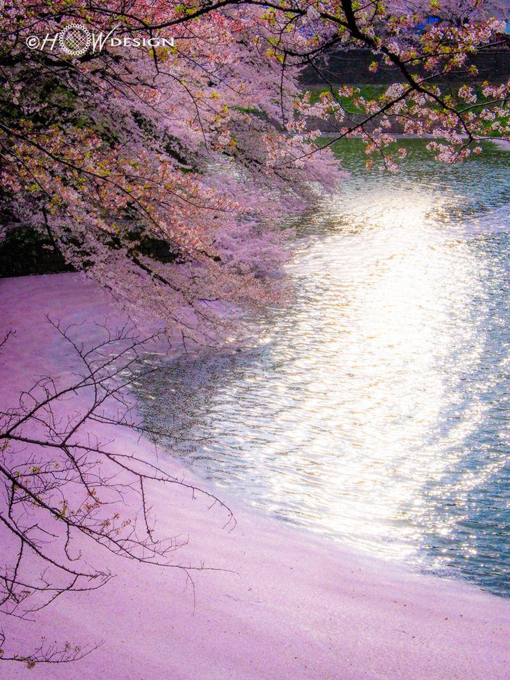"Hanakiada 花筏 ""flower petals fallen on water, resembling a raft"" in Japanese."