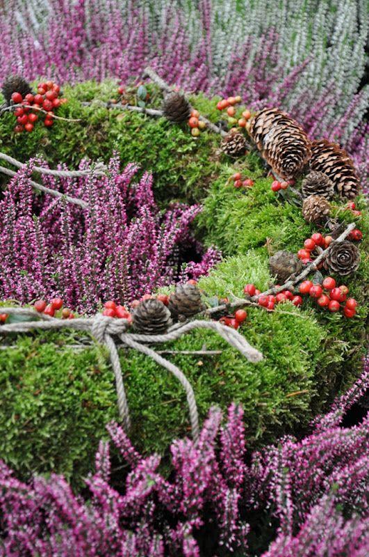 liljor och tulpaner-blog