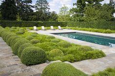 Hampshire garden - Tom Stuart-Smith