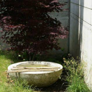 Vogelbad mit Zierahorn und Bambus #Garden #Garten  Beruhigend und belebend zugleich Als grössere sowie auch als kleinere Einheit wirkt Wasser im Garten besonders stilvoll. Selbst wenn nur beschränkter Raum vorhanden ist, kann der Zauber des Wassers in den Garten geholt werden. Dies beispielsweise durch kleine Wasserbecken, Mini-Teiche in Schalen, Vogeltränken (Vogelbäder) oder Sprudelsteine. Ein sachte blubbernder Quellstein oder ein Vogelbad mit stiller,...  weiterlesen