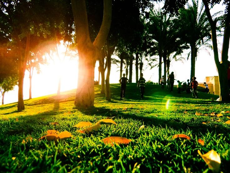 Joy | Azhar park | Cairo | Beautiful Nature | Pinterest