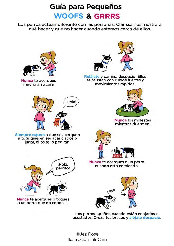 Enseñándole a los niños a convivir con un perro