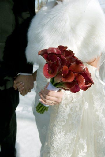 Deep red callas: Bouquet Flowers Idea, Wedding Bouquets, Calla Lilies, Wedding Flowers, Winter Weddings, Red Calla, Calla Lily, Red Winter Wedding Ideas