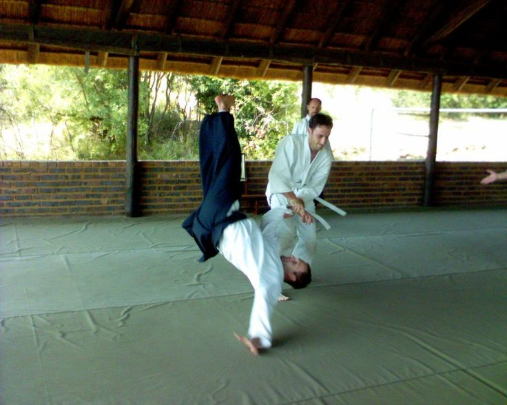 PART 1: Aikido-The art of using one's own momentum against himself  Why is Aikido seen as the the ultimate grappling self defence martial art?  Well to be concise, Aikido is a martial art solely based on self defence.Therefore meaning it has no...
