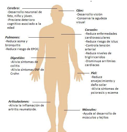Beneficios de la cabeza a los pies del omega 3