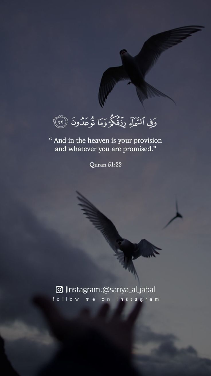 And In The Heaven Is Your Provision And Whatever You Are Promised Quran 51 22 Quran Quotes Quran Islamic Quotes