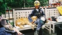 The Fascinating Science Behind Rescue Dogs And Other Animal Heroes