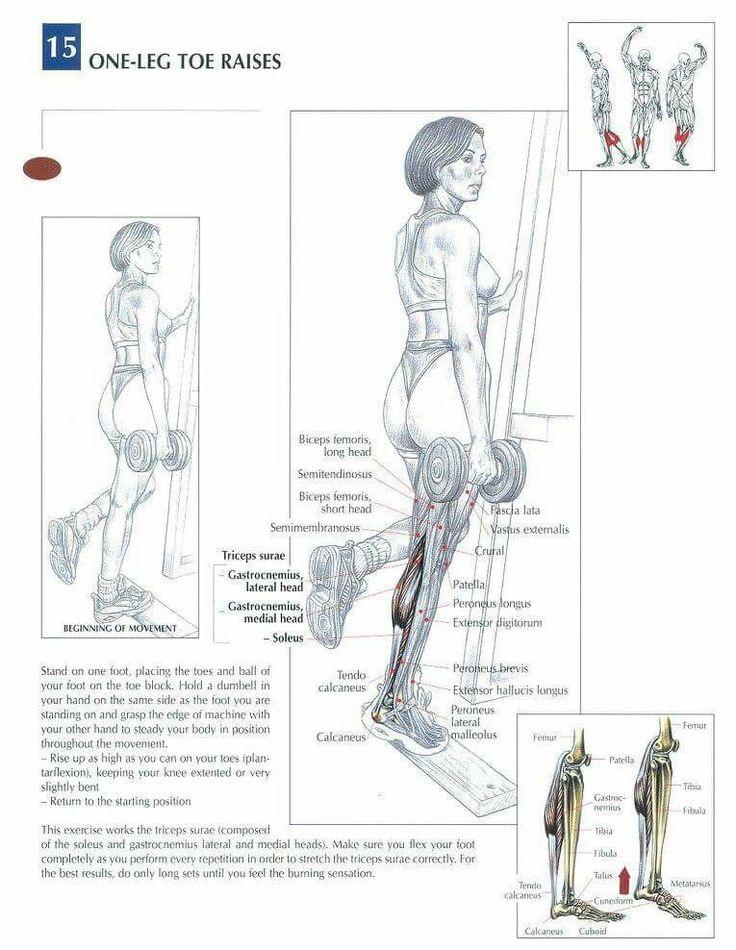 28 besten Leg WO Bilder auf Pinterest | Beine, Sportübungen und Muskel
