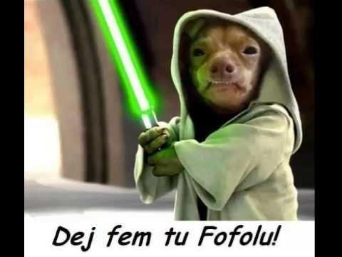 Fofola