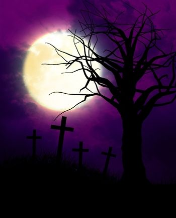 You are going to want this Creepy Graveyard Printed Backdrop for Halloween! NEW at Backdrop Express!