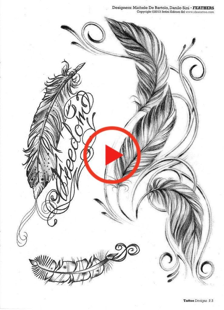 Feathers & birds tattoo in 2020 Feather with birds