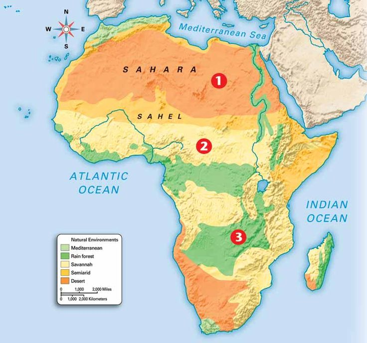 Best African Great Lakes Ideas On Pinterest Cichlids - United states map 5 great lakes