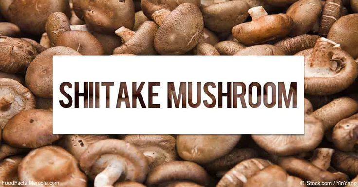 Learn more about shiitake mushrooms nutrition facts, health benefits, healthy recipes, and other fun facts to enrich your diet. http://foodfacts.mercola.com/shiitake-mushrooms.html