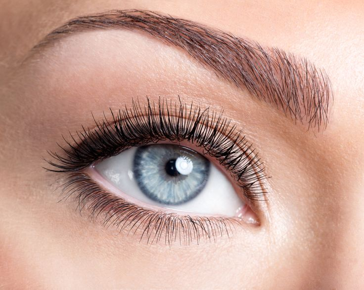 ~ ~ GIVEAWAY TIME ~ ~ Win an Eyebrow Wax and Tint!  Check out our Facebook page for instructions on how to enter.  https://www.facebook.com/MasseyMedical/