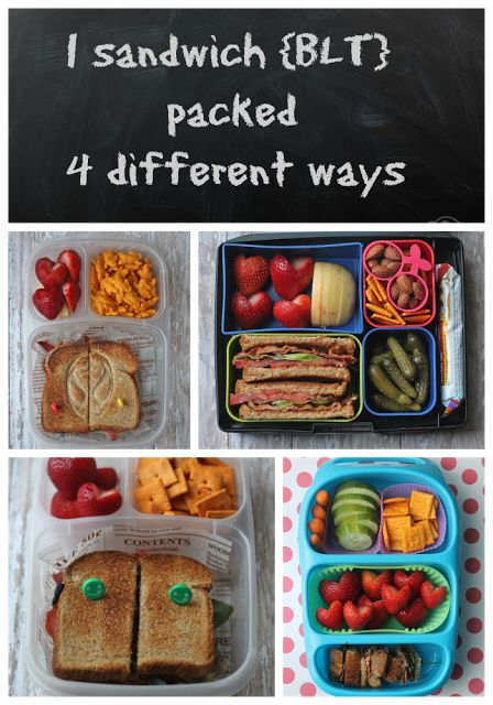 BLT School Lunch Sandwiches. Packed Four Different Ways