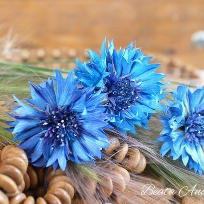 Шпильки - васильки готовы (диаметр ок. 4,5 см) :) Времени ушло много, но процесс изготовления мне понравился. Люблю васильки❤ #василькишпильки  #василекизфоамирана #шпильки #цветыизфоамиранаКрасноярск#цветыизфоамирана #свадебныеукрашения #цветочныеукрашения #украшениядляволос #фоамиран #красноярск #цветы#flowers #inspiration#homemade #ручнаяработа #wedding#свадьба #decor #presents #подарки#handmadeflowers #foamiran#flores#cornflower #krasnoyarsk#beautiful #instasize #instapic…