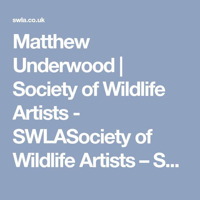 Matthew Underwood | Society of Wildlife Artists - SWLASociety of Wildlife Artists – SWLA