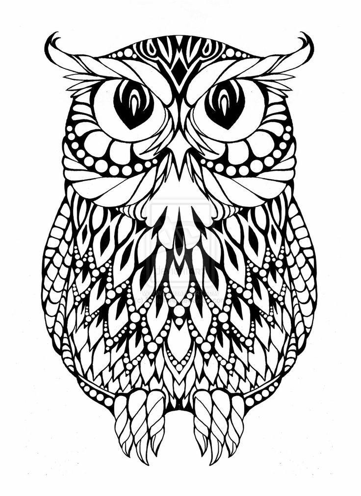 17 Best images about Pattern - Owls on Pinterest | Coloring ...