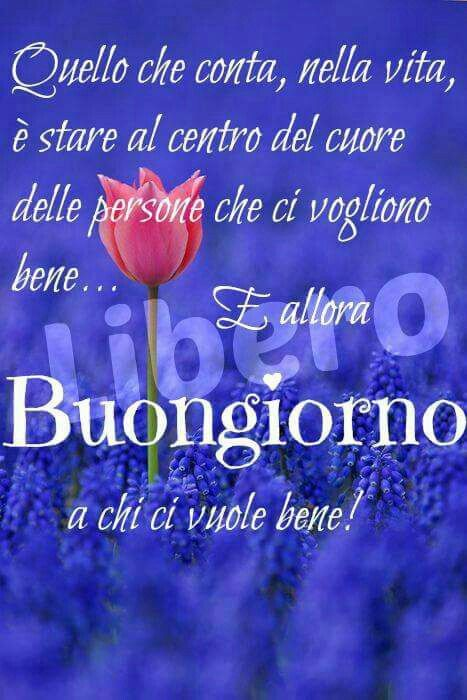 Célèbre 152 best Buongiorno Amore Mio❤❤❤ images on Pinterest | Good day  VM55