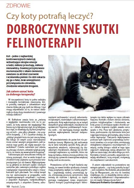 Kot zamiast tabletki! Lubimy! #radosczycia