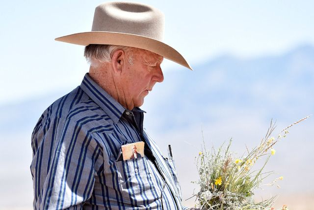 Bureau of Land Management agents shredded sensitive documents about their roundup of Bundy family cattle in the tense hours before their April 2014 standoff with armed Bundy followers, federal prosecutors have confirmed.