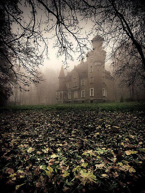 Scary silence, Trzebnica, Poland (by Marcin Mazurkiewicz).