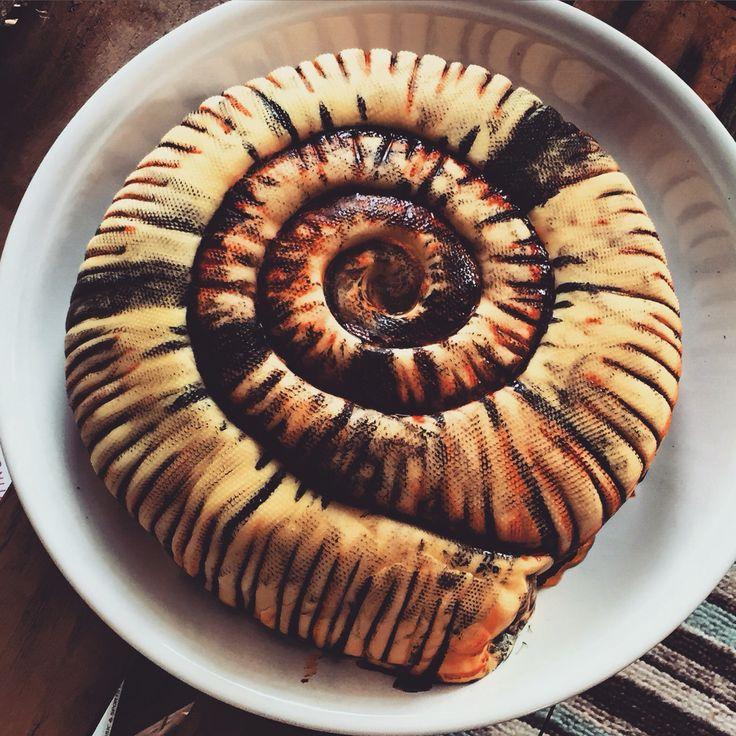 Ammonite cake made for my sister! Lemon and orange vegan cake - but tasted amazing!!