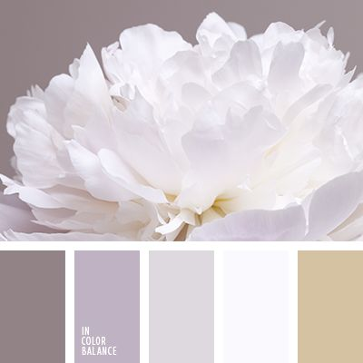 Gamma gray-lilac shades, smoky beige shining white - soft wedding palette. The color scheme can be used in the selection of romantic, touching bridesmaid dresses and solemn, aristocratic costume of the groom. These outfits emphasize the tender feelings of lovers and will organically in a magical atmosphere low-key fuss holiday.