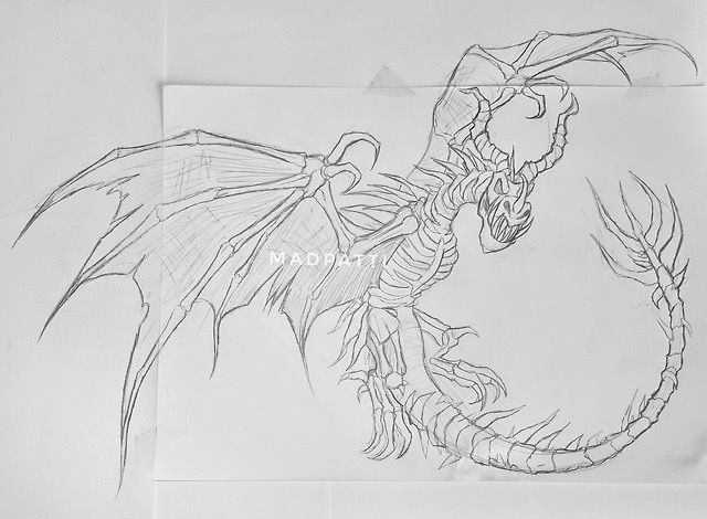 Boneknapper Dragon Sketch Drawing