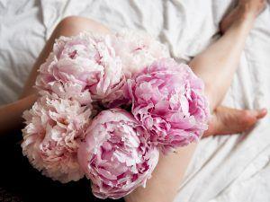 peonies flower aesthetics