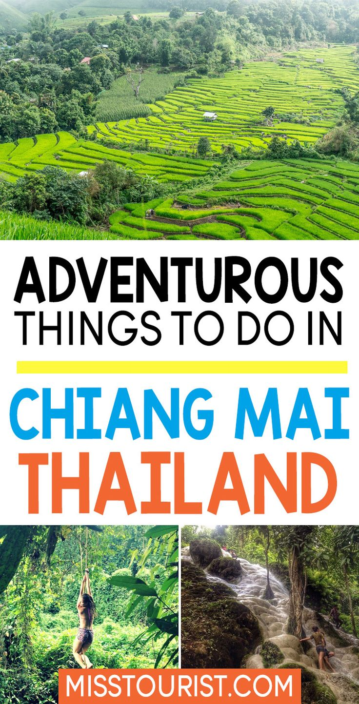 Visiting Chiang Mai Thailand? Click to find the most adventurous things to do in Chiang Mai! #thailand #asia #chiangmai ******************************************** Thailand travel | Thailand destinations | Chiang Mai things to do in | Chiang Mai Thailand things to do