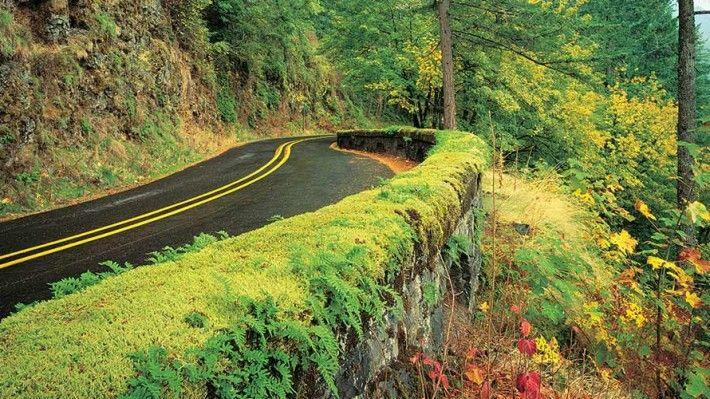 Oregon Scenic Byways - Oregon Tourism CommissionOregon Tourism ...