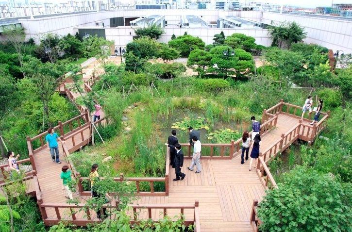 옥상 정원에 관한 상위 25개 이상의 Pinterest 아이디어  옥상 및 ...