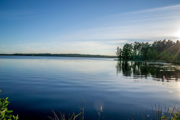Kuhankuono at Kurjenrahka national park near Turku Western Finland.
