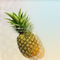 Gasp x T1R - Pineapples. [FREE DOWNLOAD] by G✗SP on SoundCloud