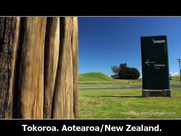 Tokoroa Talking Pole Kinleith #tokoroa