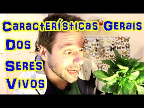 Características Gerais dos Seres Vivos - Prof. Samuel Cunha - YouTube