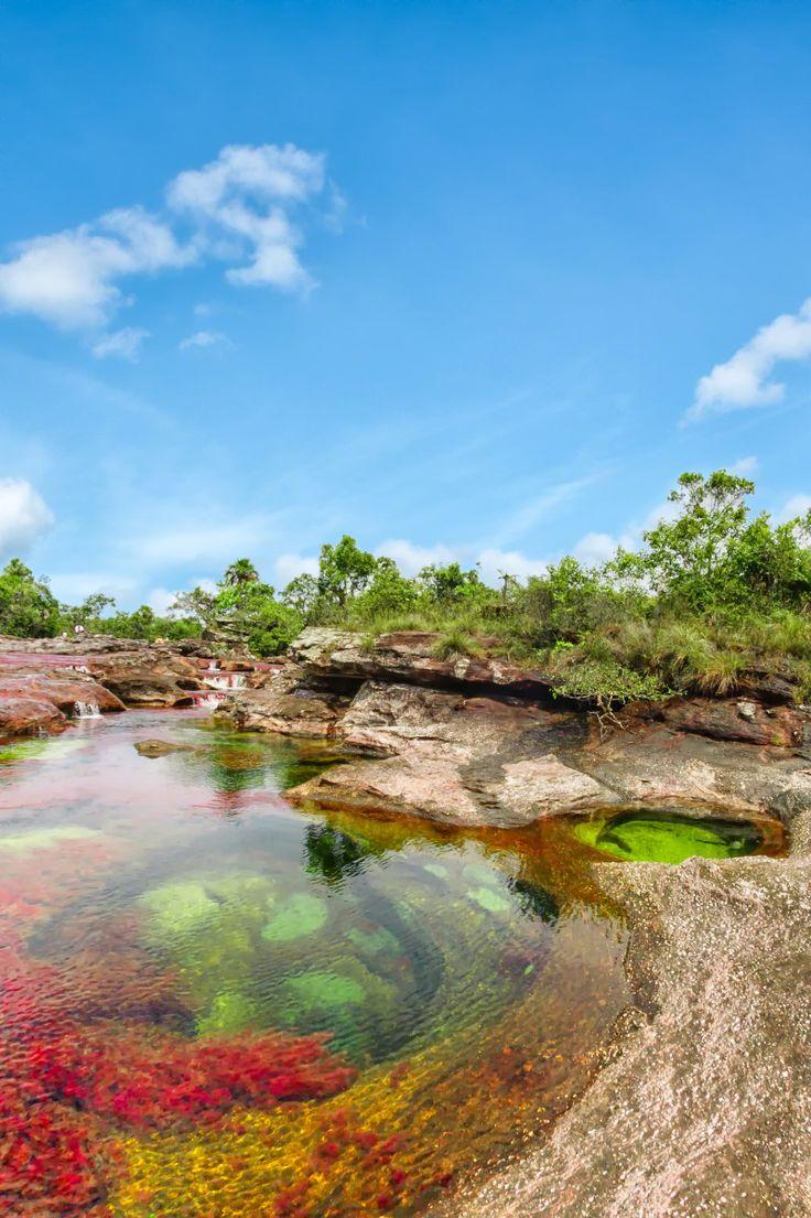 """Caño Cristales, es un río de Colombia que está ubicado en la sierra de la Macarena, denominado """"el río de los cinco colores"""", ya que en su fondo se reproducen algas de agua dulce, que producen las diferentes tonalidades: rojo, amarillo, verde, azul y negro, principalmente."""