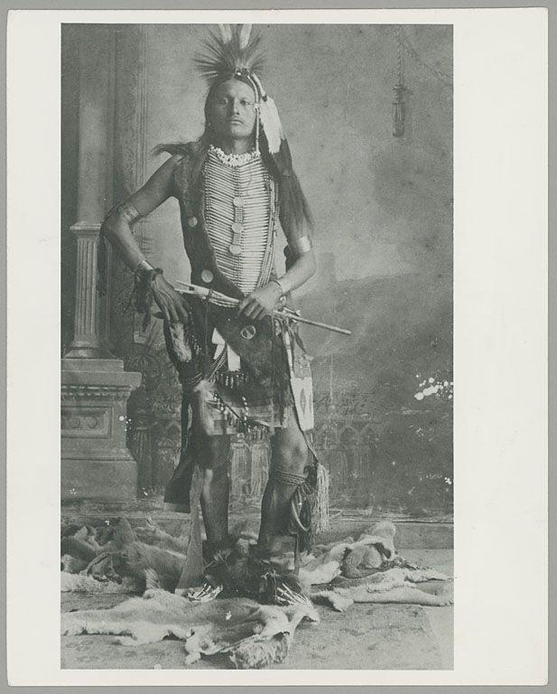 Wild Hog | www.American-Tribes.com