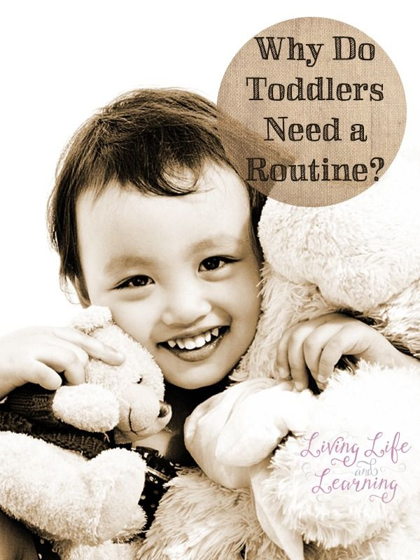 Learn how a routine for your toddler can lead to a healthy and happy rhythm for your family. This post about the perks to establishing a schedule also includes a free printable chart to help you easily organize each task and activity!