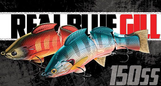 Lucky Craft Fresh Water Lure Item List - Real Blue Gill