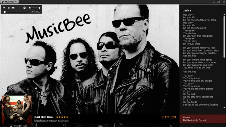 MusicBee 2.3 Final : Alternatif Müzik Oynatıcı
