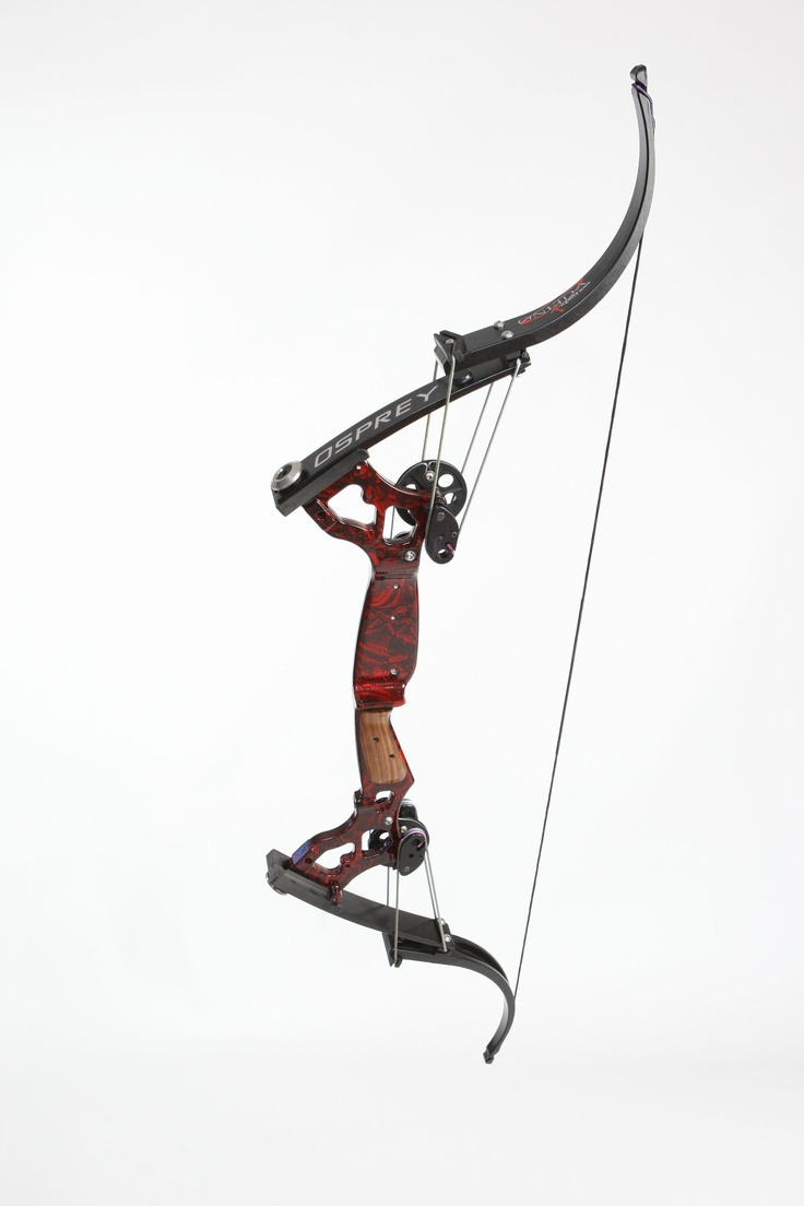 Red reaper beautiful fish on pinterest for Bow fishing bows