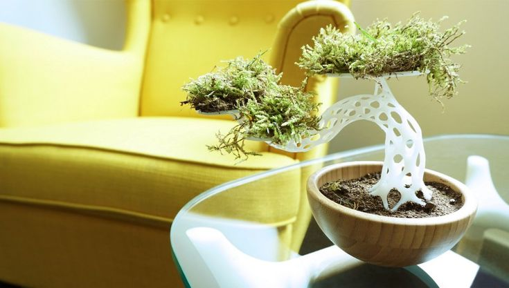 Decorating your home with unique 3D printed self-made designs is no longer a geek fantasy  bonsai tree, diy, 3D printing, moose, home decor