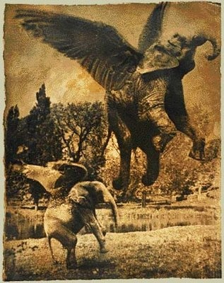 Elephants Taking off - Joan Fontcuberta